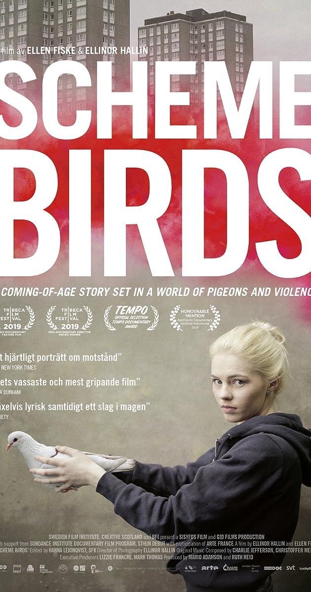 Subtitle of Scheme Birds