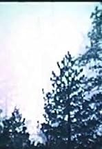 John Muir's High Sierra