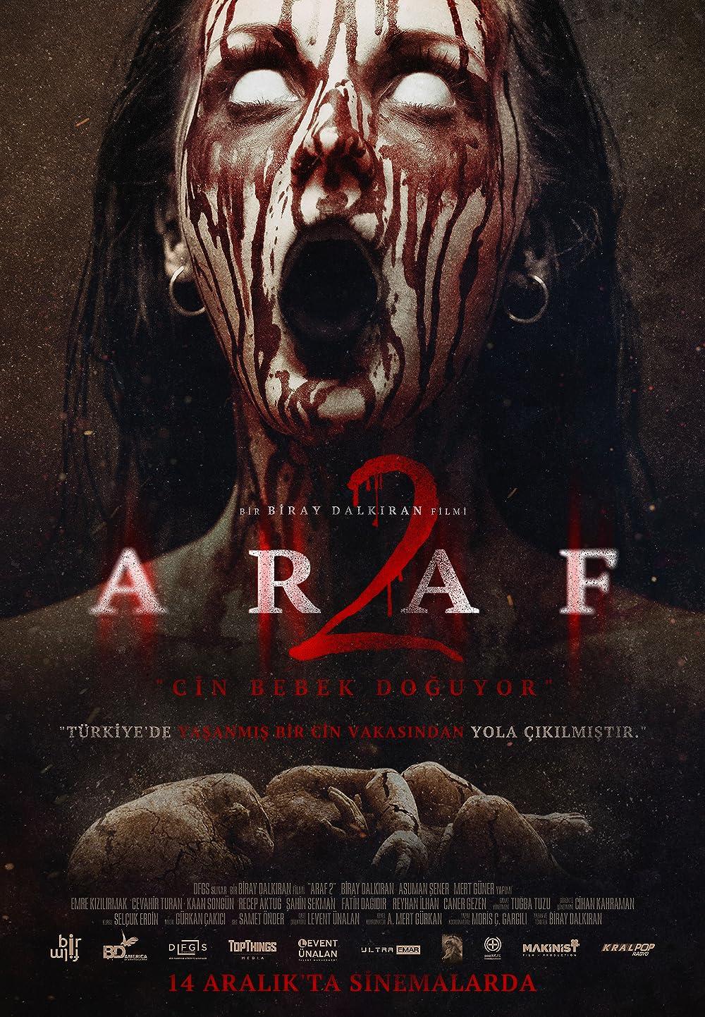 Araf 2 (2019) Hindi Dual Audio 300MB HDRip Download