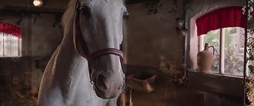 Trailer De Club van Sinterklaas & Het Pratende Paard (2014)