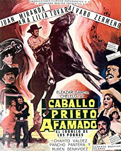 Movies videos download Caballo prieto afamado by [1920x1600]