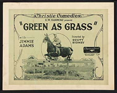 Whats a really good movie to watch high Green as Grass USA [flv]
