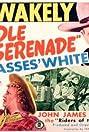Saddle Serenade (1945) Poster