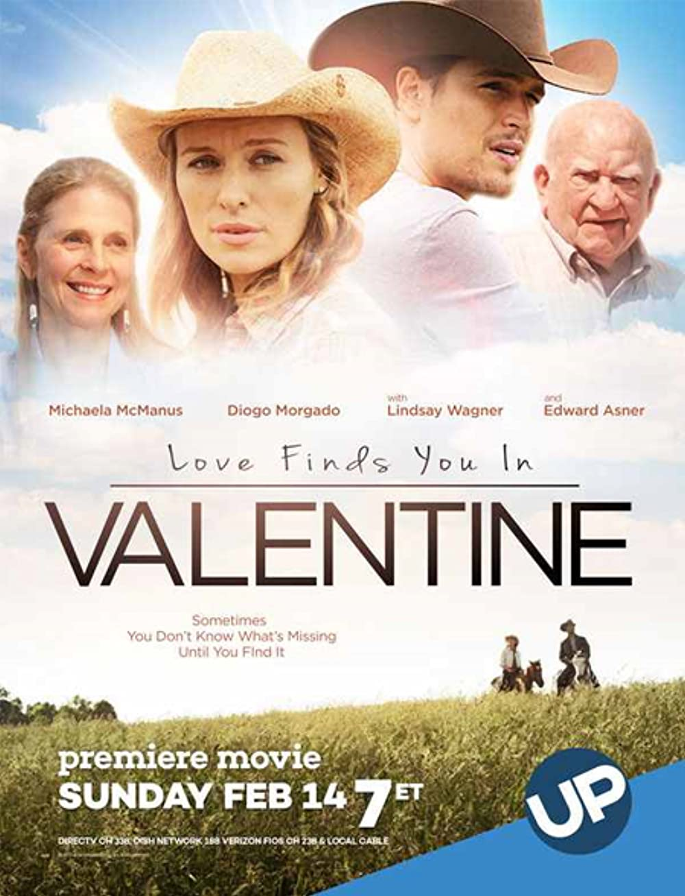 Love Finds You In Valentine 2016 Hindi Dual Audio 1080p BluRay ESubs 1.5GB