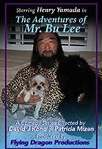 Mr. Bu Lee