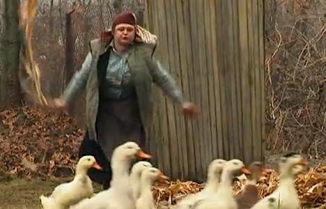 Action movie english download Gripa la pasari Moldova [2048x2048]