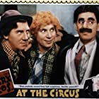 Groucho Marx, Chico Marx, and Harpo Marx in At the Circus (1939)
