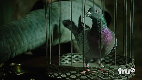 """TruTV's Laff Mobb's Laff Tracks - """"Unlimited Pigeons"""" featuring Daniel Tirado"""