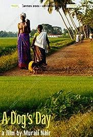 Pattiyude Divasam Poster
