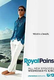 Mark Feuerstein in Royal Pains (2009)