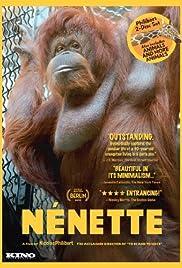 Nénette(2010) Poster - Movie Forum, Cast, Reviews