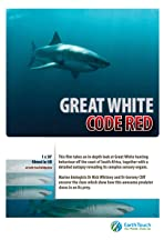 Great White Code Red