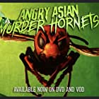 Angry Asian Murder Hornets (2020)