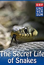 The Secret Life of Snakes (2016) 1080p