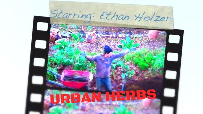 Urban Herbs: YouTube Web-Series (2017-)