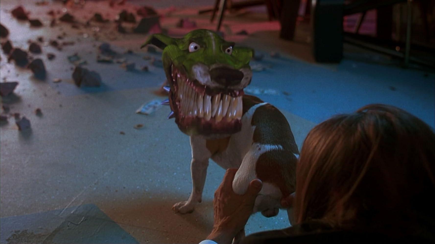 Маска гифка пес, смешные