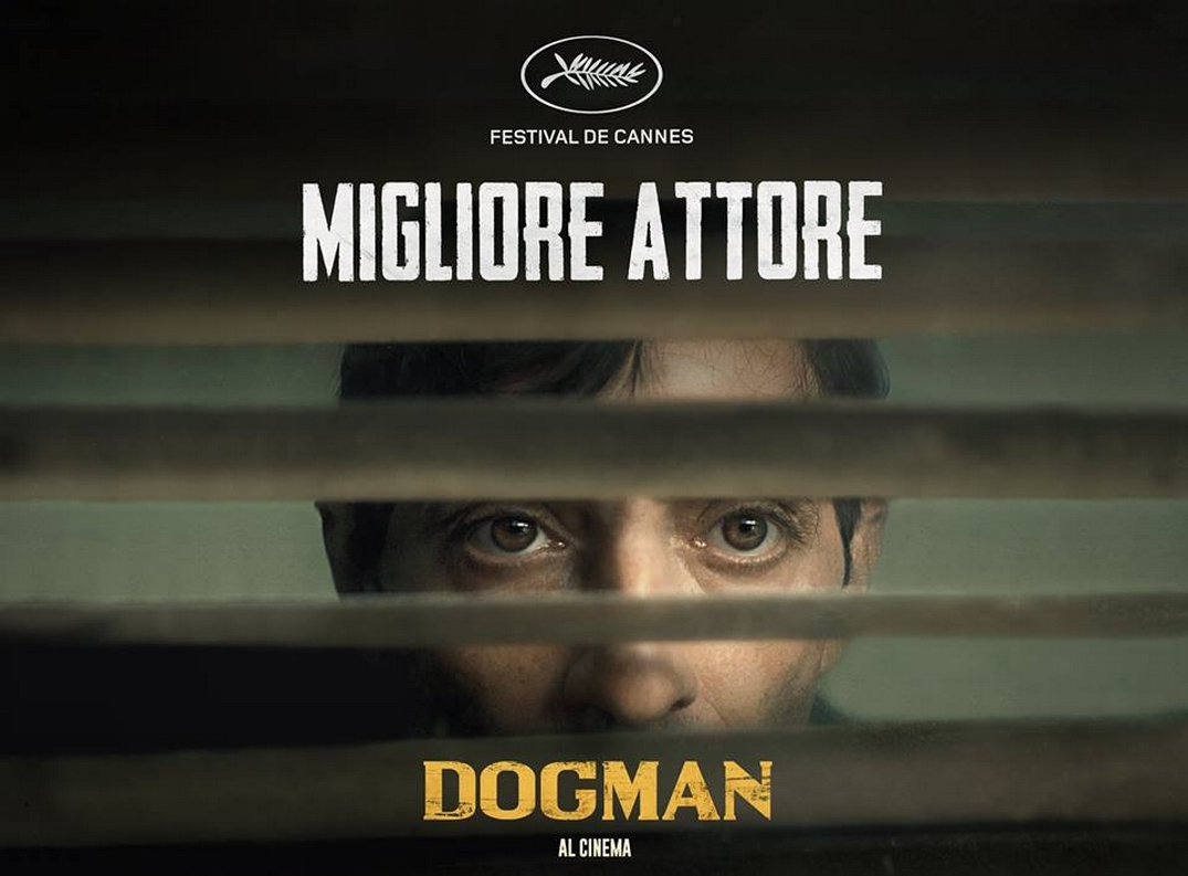 Dogman (2018) - Photo Gallery - IMDb