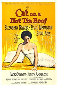 Primary photo for Cat on a Hot Tin Roof
