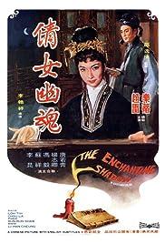 The Enchanting Shadow Poster