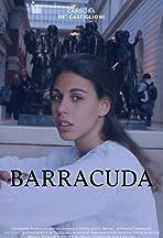 Barracuda