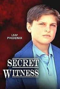 Primary photo for Secret Witness