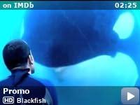 Blackfish (2013) - IMDb