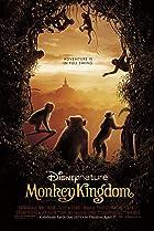 Monkey Kingdom (2015) Poster