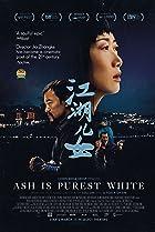 Jiang hu er nü (2018) Poster