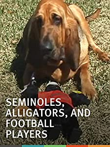 Downloading free psp movies Seminoles, Alligators, and Football Players: A Florida Rivalry [720