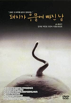 The Day a Pig Fell Into the Well (1996)
