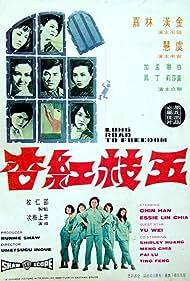 Wu zhi hong xing (1971)