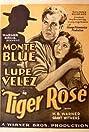 Tiger Rose (1929) Poster
