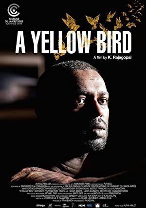 黃鳥 | awwrated | 你的 Netflix 避雷好幫手!