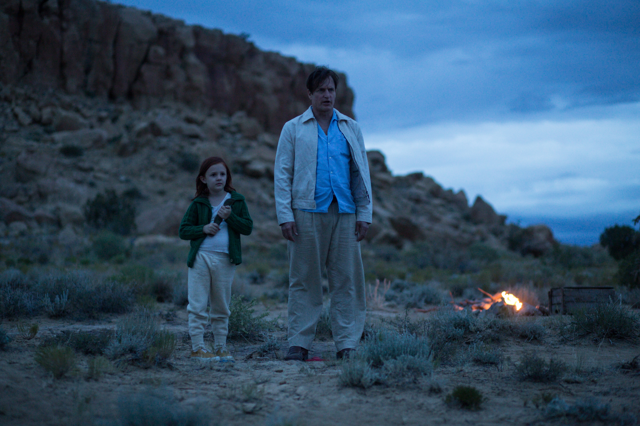 Woody Harrelson and Chandler Head in The Glass Castle (2017)