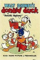 Donald's Nephews