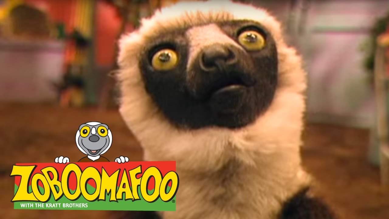 zoboomafoo tv series 1999 2001 photo gallery imdb