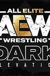 'Aew Dark: Elevation – Episode 18' Review