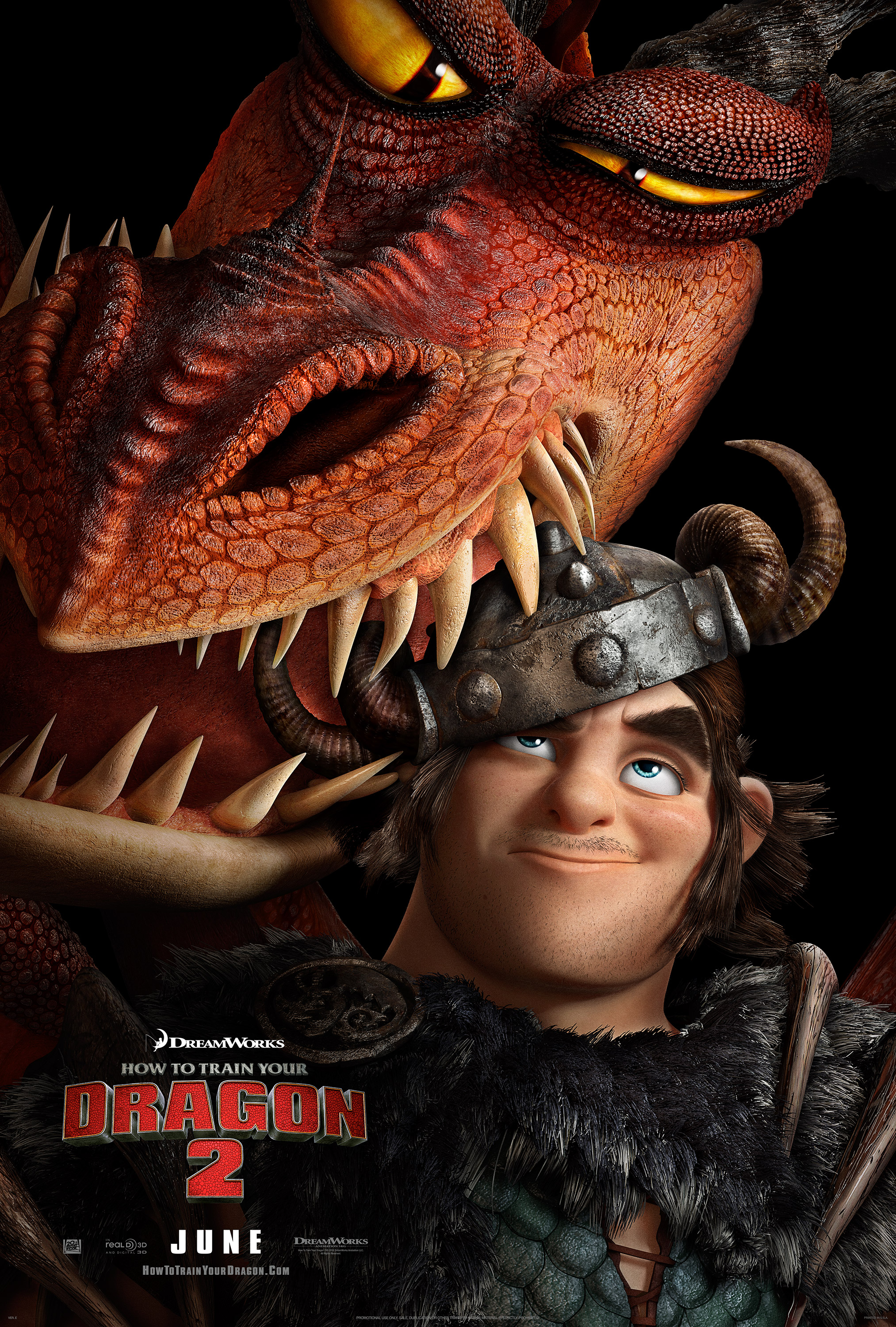 How to Train Your Dragon 8 (8014)