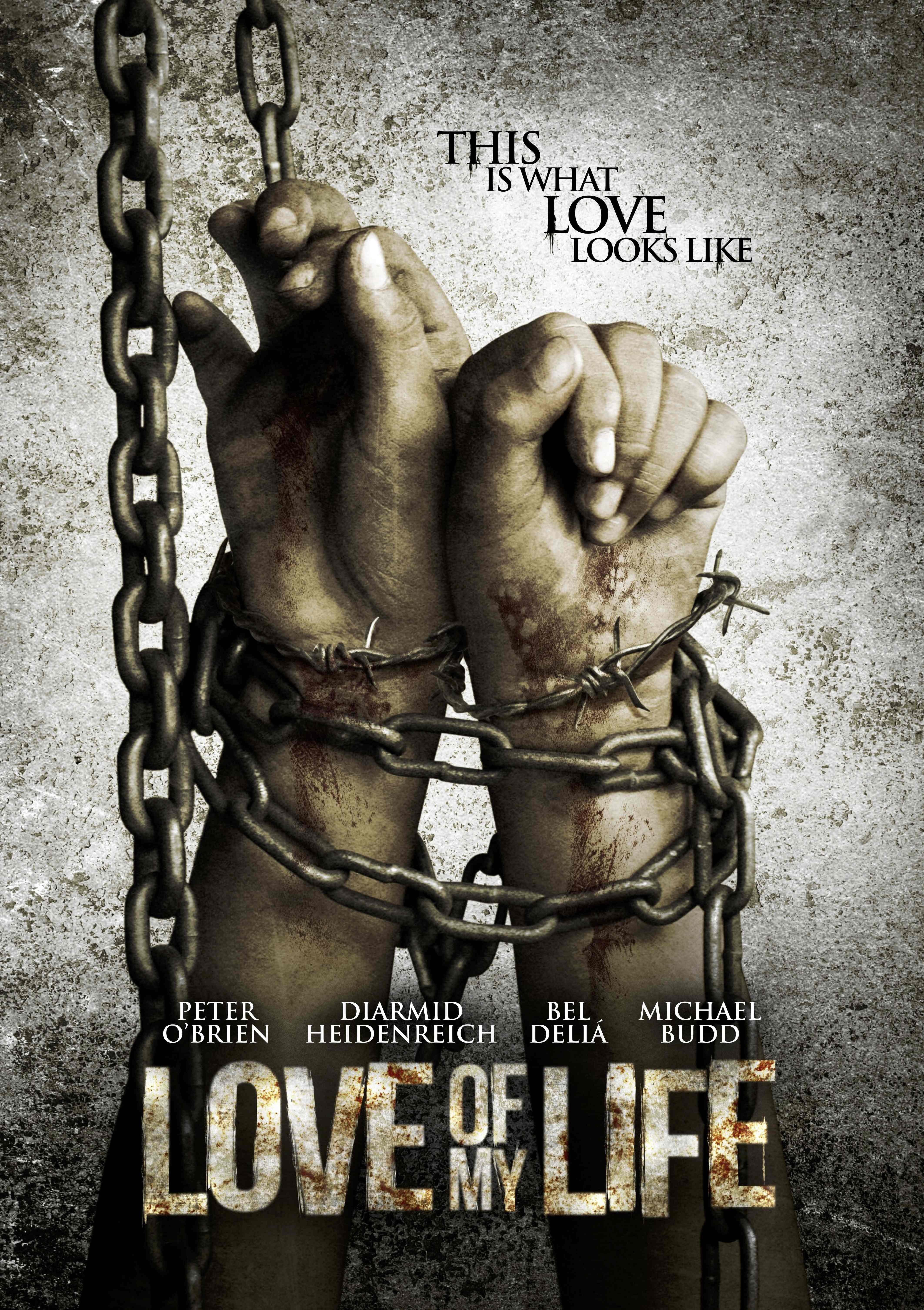 love of my life 2013 imdb