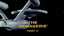 The Menagerie: Part II