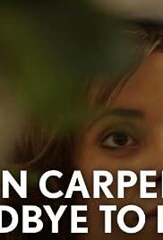 Karen Carpenter: Goodbye to Love Poster