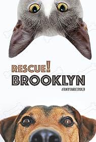 Rescue! Brooklyn (2015)