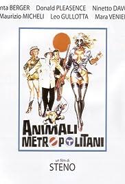 Urban Animals Poster