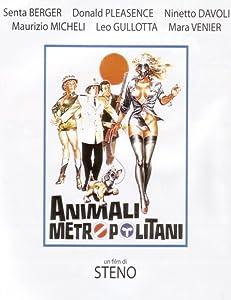 Animali metropolitani Italy