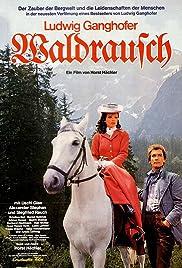 Waldrausch Poster