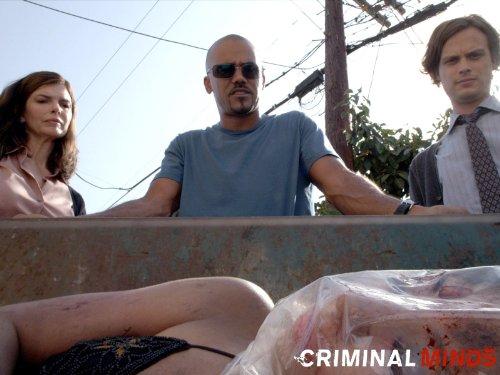 Watch esprit criminel online dating