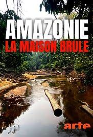 S.O.S. Amazonas: Apokalypse im Regenwald Poster