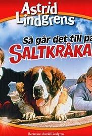 Så går det till på Saltkråkan Poster