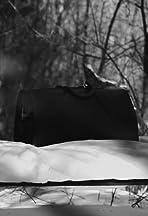 La mallette noire