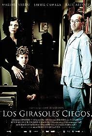 Javier Cámara, Maribel Verdú, Raúl Arévalo, and Roger Príncep in Los girasoles ciegos (2008)